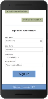 Mailchimp for WordPress AMP sign-up form