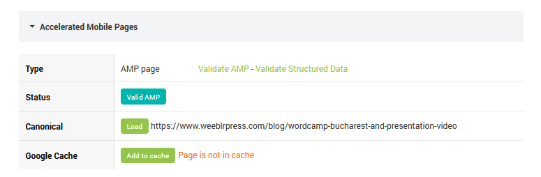 SEOInfo AMP section summary for an AMP page