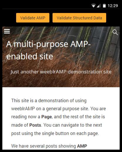 weeblrAMP debug module