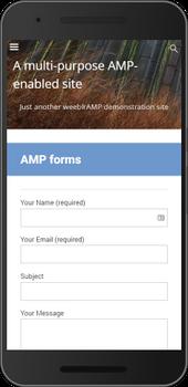Screenshot of weeblrAMP AMP forms on demonstration site